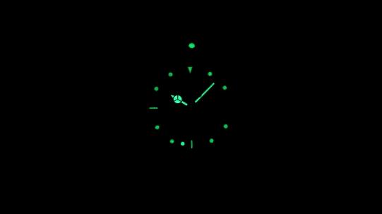30606 Женские часы Invicta Pro Diver - Фото_2