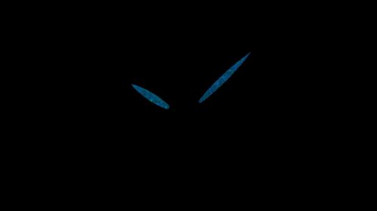 31302 Женские часы Invicta Angel - Фото_2